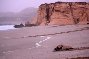 (Belated) Throwback Thursday: Bimmah Sinkhole and Ras al Jinz,Oman!