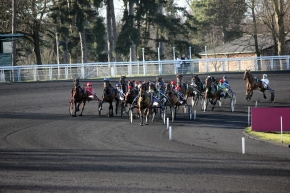 A Day at the Races: Guest postingagain!