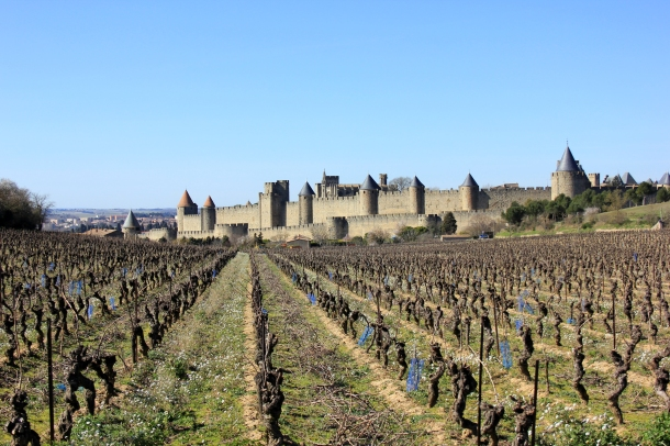 The castle of Carcassonne, from behind. After my multi-hour tour I hiked up the empty road in the back, walked a ways into some fields and took some photos of the whole structure--too big to do from inside!