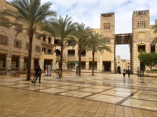 AUC New Campus--those buildings are actually impressively tall.